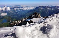 view from Titlis (welenna) Tags: blue schnee summer sky mist mountain lake snow mountains alps landscape switzerland see view natur wolken berge stadt alpen berneroberland titlis trbsee schwitzerland