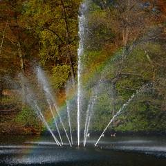Sonsbeek Fountain Rainbow Effect (Nelis Zevensloot) Tags: regenboog rainbow pond arnhem teich fontana fontaine parc regenbogen veluwezoom arcenciel vijver sonsbeek arnheim fontein fontanna sonsbeekpark petitlac arnhm