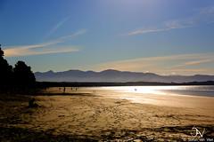Rabbit Island (savv_nz) Tags: ocean newzealand beach gold sand nelson hills tasmansea rabbitisland goldensand