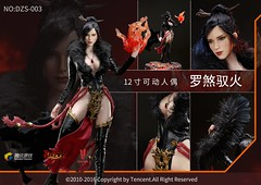 VERYCOOL TOYS VCF-DZS003 Raksa - 17 (Lord Dragon ) Tags: hot female toys actionfigure doll seamless verycool onesixthscale 16scale 12inscale