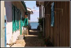 L'Herbe : village ostricole (Les photos de LN) Tags: ruelle plage cabane alle bassindarcachon pcheurs lherbe aquitaine impasse borddemer villageostricole
