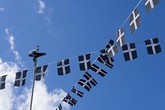 St Piran's crosses - lots of them (chrisotruro) Tags: blue sky spring cornwall flags april fluttering porthleven cornishcross cornishflag stpiranscross stpiransflags