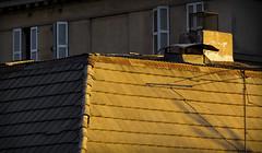 TECHO ROOF (jpi-linfatiko) Tags: roof light shadow brown luz contrast cafe nikon sombra contraste techo tejas calido d5200