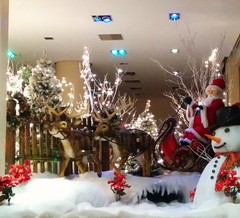 Christmas decorations at Damian .. (Ryan Lemos) Tags: christmas light india white snow reindeer snowman decoration bombay santaclaus mumbai windowdisplay sleigh damian bandra 2015