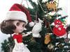 BaD:  22nd Dec 2015 - Christmas tree decorations (Calendar girl 48 / grannygreen) Tags: jessica christmastree blythedolls christmastreedecorations baddec2015