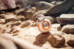 BB-8 (isayx3) Tags: 35mm star nikon force joe edward f2 wars nikkor plain droid d800 mcgowan awakens 35mmf2af bb8 plainjoe isayx3