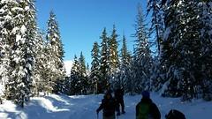 20160101_111038 (mjfmjfmjf) Tags: snow oregon favorited trilliumlake 2016 snoeshoe