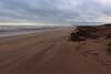 Blowing Sand,Sands of St Cyrus,St Cyrus National Nature Reserve_jan 16_680 (Alan Longmuir.) Tags: aberdeenshire grampian blowingsand stcyrus shiftingsands sandsofstcyrus stcyrusnationalnaturereserve