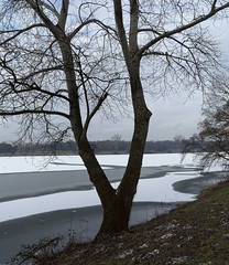 Ice Age - 001-0029_Web (berni.radke) Tags: schnee winter snow ice iceage eis mnster winterlandscape winterlandschaft aasee eiszeit
