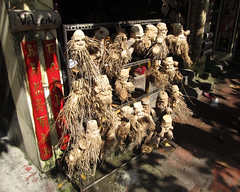 "Hoi An: sculpture sur racines de bambou <a style=""margin-left:10px; font-size:0.8em;"" href=""http://www.flickr.com/photos/127723101@N04/24162618593/"" target=""_blank"">@flickr</a>"