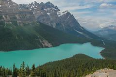 2009-07-05 143245 Peyto Lake (JnHkstr) Tags: canada alberta peytolake canadianrockies konicaminolta dimagez20