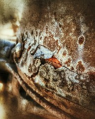 Olden Farm Implement (detail) (Flickr Goot) Tags: cameraphone camera old project phone antique farm january samsung machinery smartphone galaxy rusted 365 ih s6 2016 internationalharvester project365