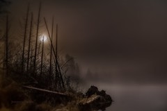 Sleeplessness (jeanmarie's photography) Tags: trees light sky moon mist lake cold nature water fog night clouds landscape haze nikon shore nightsky waterscape jeanmarie cottagelake jeanmariesphotography jeanmarieshelton