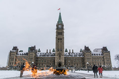 Warmth by the Fire : January 17, 2016 (jpeltzer) Tags: parliament parliamenthill peacetower centreblock