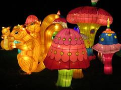 UK - London - Chiswick - Magical Lantern Festival 0- Squirrel and mushrooms (JulesFoto) Tags: uk england london mushroom squirrel chiswick chineselanterns chiswickpark chiswickhousegardens magicallanternfestival