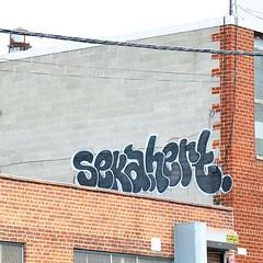 SEKA HERT (I <3 SEKA $) Tags: nyc rural graffiti tunnels oj bombing roda false soze hert seka cayz