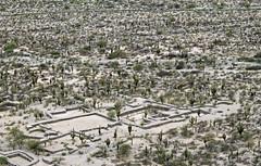 Ruinas de los Quilmes (Jennifer Feinbraun) Tags: naturaleza nature argentina landscape paisaje noa tucumn ruinasdelosquilmes 10faves