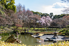 Garden From On High (-Astin-) Tags: trip travel trees vacation plants nature water japan garden landscape tokyo view trips sakura imperialpalace sigma18200os canon7d