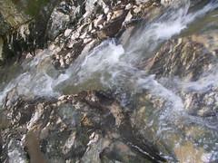 2016.02.21_OlhosAgua_Alcanena_1920x_056 (PatricioDomingues) Tags: portugal water gua olhosdeagua alviela 20160221