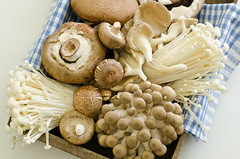 mixed mushrooms for stir fry (Tesco ČR) Tags: mushrooms healthy chinesefood restaurants fungi fungus ingredients portobello japanesefood stirfry vitamins shiitake nutrition enoki oystermushrooms unitedkingdomofgreatbritainandnorthernireland shimejimushrooms brownbeechmushrooms exoticmushrooms
