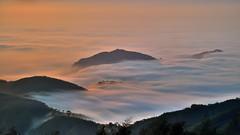 大崙山 ~夕之雲瀑~ Clouds waterfall Sunset (Shang-fu Dai) Tags: sunset sea sky clouds landscape nikon taiwan 南投 formosa 台灣 日落 風景 d800 雲海 原野 戶外 銀杏森林 夕彩 afs24120mmf4 武岫 大崙山觀光茶園