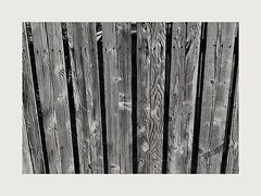 Weather my timbers (busmender1964) Tags: fencing weatherd woodentextures