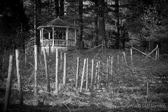 Pavilion / Pavillon (guysamsonphoto) Tags: bw gazebo pavilion pavillon victoriaville victo sony70200f4 sonyalpha7rmkii