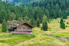 Mountain hut (Fabio.Lotti) Tags: wood travel wild summer italy panorama sunlight mountain holiday mountains alps tree green tourism nature forest landscape site amazing italian scenery europe italia european view natural bright outdoor awesome scenic meadow it unesco alpine dolomites worldheritage campitellodifassa trentinoaltoadige mountainchain campestrin fassavalley