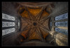 Looking Up (jmbarcia) Tags: uk greatbritain inglaterra england primavera liverpool spring europa europe unitedkingdom hdr highdynamicrange reinounido merseyside gbr barcia photomatix unitedkindom jmbarcia ©jmbarcia copyright©2016jmbarcia