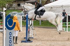 DSC08628_s (AndiP66) Tags: springen hildisrieden reitsportcenter estermann traselinge 2016 september pferd horse schweiz switzerland kantonluzern cantonlucerne concours wettbewerb horsejumping equestrian sports springreiten pferdespringen pferdesport sport sony sonyalpha 77markii 77ii 77m2 a77ii alpha ilca77m2 slta77ii sony70400mm f456 sony70400mmf456gssmii sal70400g2 andreaspeters luzern ch