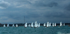 Club Nutic L'Escala-Puerto deportivo Costa Brava-36 (nauticescala) Tags: optimist navegar costabrava regatas regata feva creuer velalleugera velaligera cbsm lser lescalagde