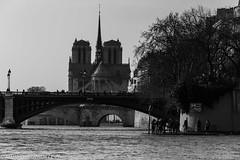 IMG_2787.jpg (matthieu.butruille-Photographie) Tags: paris architecture noiretblanc notredame personnage quaideseine