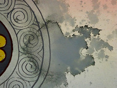 DSC09491 (scott_waterman) Tags: detail ink watercolor painting paper lotus gouache lotusflower scottwaterman