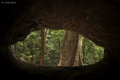 Ulavi Caves (v4vjk) Tags: india trek canon nikon karnataka dandeli ulavi canon40d nikon20mmf35ais