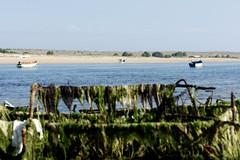 DSC01094 (hofsteej) Tags: lagune lagoon morocco maroc oualidia