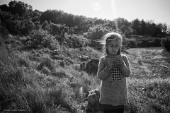 Sunlight (Carlos Poveda Fotografia) Tags: leica bw sunlight byn blackwhite flare leicam8 voigtlandercolorskopar21mmf4