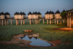 Safari, Sarova Salt Lick Game Lodge (robseye76) Tags: africa park holiday game kenya salt lick lodge safari national vacations kenia tsavo wakacje saltlick afryka sarova