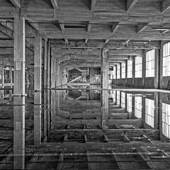 Origin of Symmetry 1 (EccE LuX) Tags: blackandwhite monochrome architecture reflections de point mirror ruins noir noiretblanc decay hangar miroir vanishing et blanc industriallandscape lignes ruines fuite forgottenplaces frichesindustrielles paysageindustriel lieuxoublis sigma35mmf14art nikond750