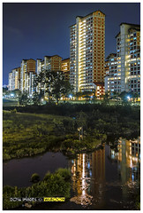 Night  Bishan Park @ Singapore_3262 (wsboon) Tags: park city travel cruise light sky holiday color tourism water architecture night clouds composition buildings relax corporate design photo google search nikon singapore asia exposure cityscape view nocturnal skyscrapers heart perspective visit tourist calm explore photograph land destination serene cbd pimp hdb nocturne dri singapura centralbusinessdistrict blending angmokio bishan singaporecityscape masteratwork amk bishanpark uniquelysingapore reflation singaporecity peopleculture d700 singaporecruise singaporelandscape singaporetouristattractions nocommentsimplyperfectsingaporeview singaporefamouslandmarks