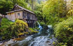 History Flows (John Westrock) Tags: trees nature creek historic pacificnorthwest washingtonstate gristmill canoneos5dmarkiii canonef1635mmf4lis