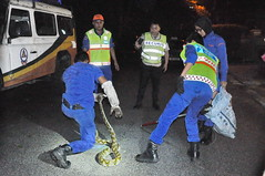 Civil defense team captured the python (Lim SK) Tags: house night python