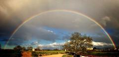 Tarde de paseo (victoria@) Tags: naturaleza color primavera apple arcoiris iphone