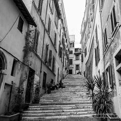 roma-621 febbraio 2016 (Fabio Gentili Photography) Tags: bw italy rome roma bn coliseum foriimperiali colosseo