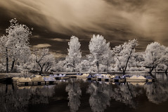 Boats Trees and Clouds At Santee Lakes - Explored (Bill Gracey) Tags: trees sky water clouds ir boats highcontrast surreal infrared otherworldly santeelakes infraredphotography convertedinfraredcamera