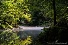 Ottavia Serafini (Ottavia Serafini) Tags: parco holiday nikon croatia nikkor croazia kupa vacanze nazionale sorgenti parcofaunistico nikond5100