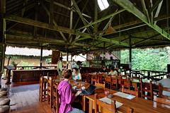 Dining area at Tambopata Research Center in Peru-01 5-31-15 (lamsongf) Tags: travel peru southamerica tambopata amazonbasin