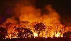 Hazard Reduction Burn (~Jek~) Tags: geotagged fire australia canberra aus prescribedburn controlledburn bushfire australiancapitalterritory hazardreductionburn canberranaturepark firemanagement mountwanniassa wanniassahillsnaturepark actparksandconservationservice mtwanniassa geo:lat=3538675615 geo:lon=14911567479