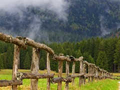 linea continua (Fernando De March) Tags: verde nuvole val foresta consiglio menera