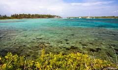 Petite Terre - Guadeloupe (Kri1978) Tags: terre petite guadeloupe