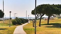 Mar_0483 (Joanbrebo) Tags: barcelona park parque parc poblenou autofocus lunaphoto efs18135mmf3556is canoneos70d